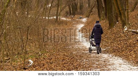 Mom with stroller comes in the winter woods on a track covered with white snow the street already cold people go to warm jackets