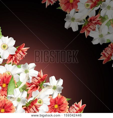 Beautiful floral pattern of daffodils and dahlias