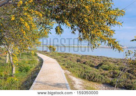 Trail Running Along Larnaca Salt Lake