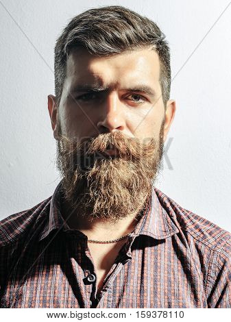 Frown Bearded Man Hipster