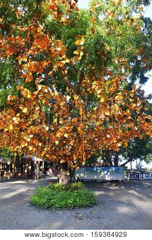 PATTAYA THAILAND - 22 NOV 2016: Golden leaves and bells hang on the tree at the entrance of Sanctuary of Truth in Pattay Thailand