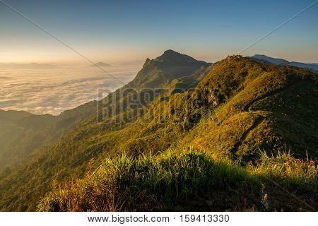 Beautiful mountains landscape at Doi pha tang Chiang rai top view in thailand