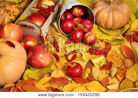 autumn background, fruits and vegetables on yellow fallen leaves, apples and pumpkin, decoration in country style