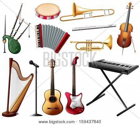Different types of musical instrument on white illustration