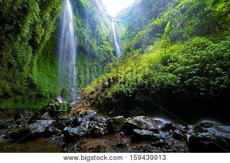 waterfall Madakaripura in deep forest in East Java Indonesia