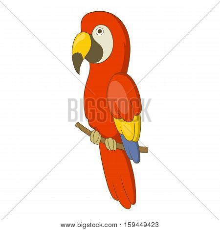Red brazil parrot icon. Cartoon illustration of red brazil parrot vector icon for web