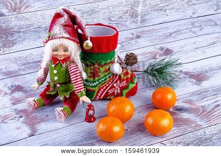Christmas scene with elf Christmas socks tangerines and spruce branch. On a light background.