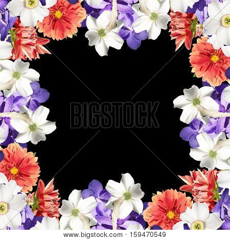 Beautiful floral background of daffodils, dahlias and orchids Vanda