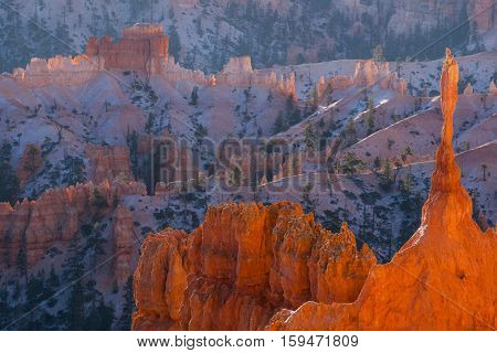 The Sentinel Hoodoo - Bryce Canyon National Park