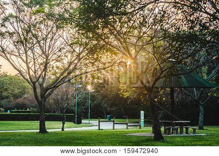 Villa-lobos Park In San Paulo (sao Paulo), Brazil (brasil)