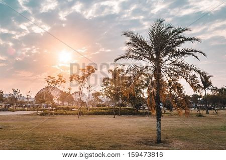 Sunset At Villa-lobos Park In San Paulo (sao Paulo), Brazil (brasil)