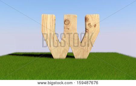 3D Decorative Wooden Alphabet On Green Grass, Capital Letter W