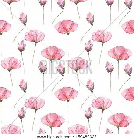 Seamless floral pattern with pink tender flowers hand drawn in watercolor on a white background