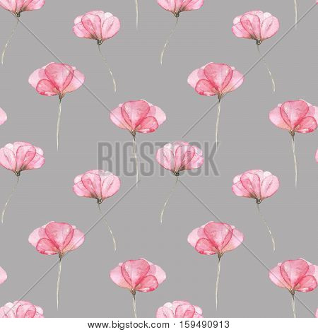 Seamless floral pattern with pink tender flowers hand drawn in watercolor on a grey background