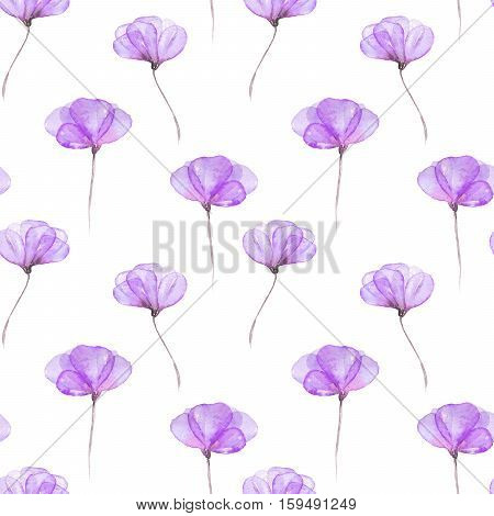 Seamless floral pattern with purple tender flowers hand drawn in watercolor on a white background