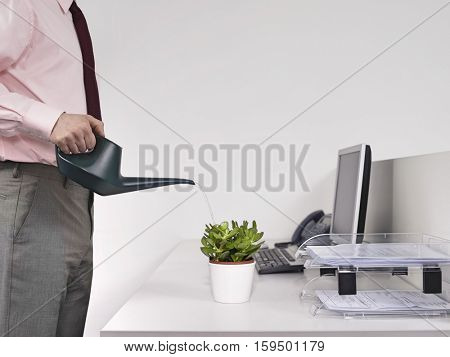 Side view midsection of a male office worker watering desk plant