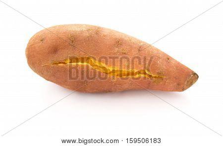 roasted sweet potato on a white background