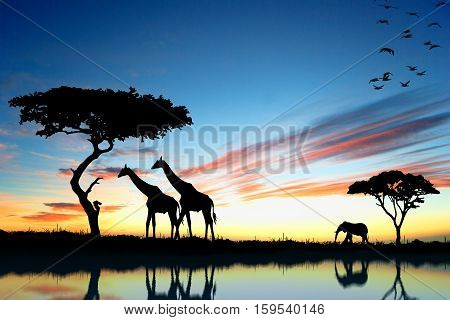 Trees In Savanna With Blue Sky, Grass And Animals.