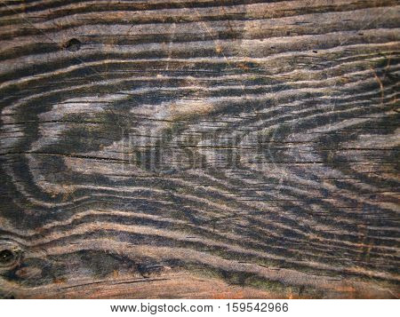 old wood texture for background, natural structure