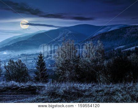 Foggy Night  In Carpathian Mountains At Night