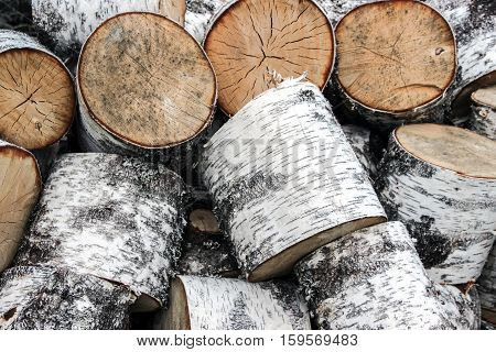 a pile of chopped trunk as firewood
