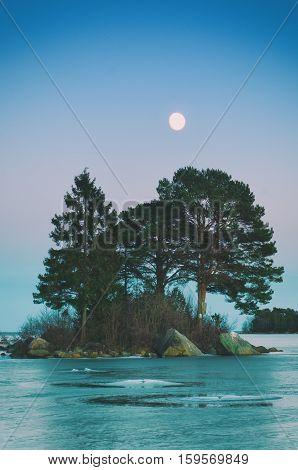 Winter swedish landscape at sea coast with pine trees and moon