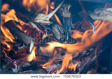 Fire In The Small Portable Stove
