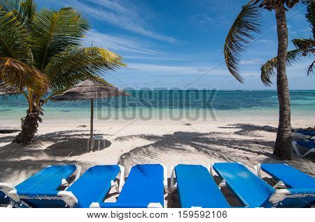 Sun loungers on a blue Caribbean beach with white sand and palm trees.