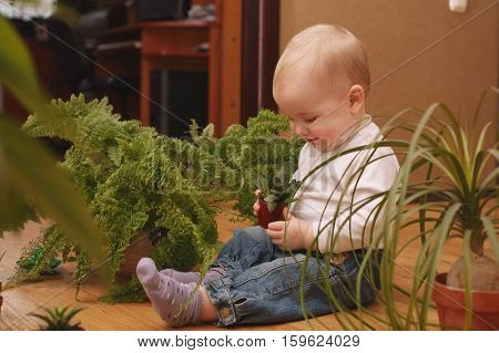 photo of little boy with many plants at home