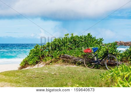 Photo of an amazing tropical beach on the sunny day