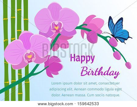 Branch of pink orchids bamboo stems and butterfly in flat style. Happy birthday greeting card. Flowers design background. Vector illustration.