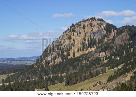 Green meadows and pine forests on the mountain slopes
