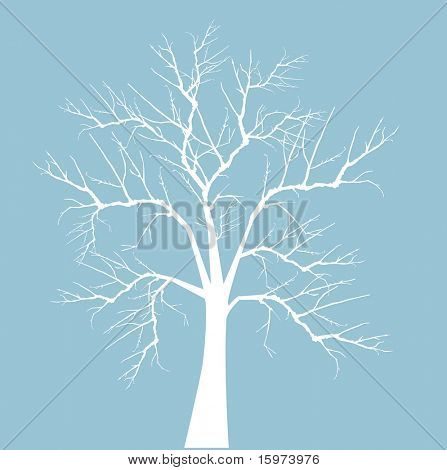 bare winter tree vector