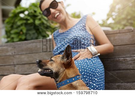 Happy Pregnant Woman With Joyful Smile Playing With Her Dog Outdoors, Sitting On Wooden Beach In Par