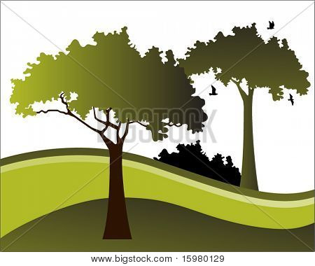 landscape with trees and birds