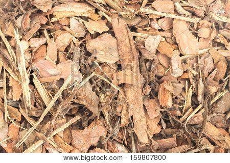 Pine tree bark pieces background. Broken woods chip nature texture