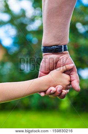 Father and Daughter Hands on the Nature Background