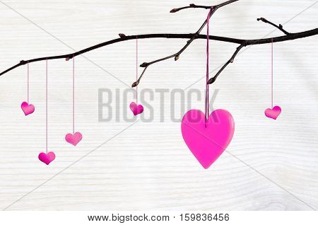 red heart hangs on a tree branch on white background