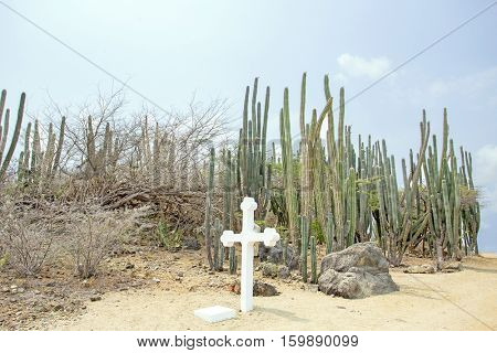 White cross in the cunucu on Aruba island in the Caribbean