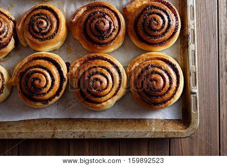 Freshly baked cinnamon rolls buns with cocoa and spices on a metal a baking sheet. Close-up. Kanelbulle - swedish pastry dessert. Christmas baking pastry.
