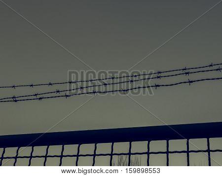 Vintage Looking Barbed Wire