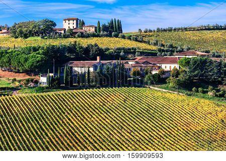 Beautiful Tuscany countryside -  vineyards in Chianti region, Italy