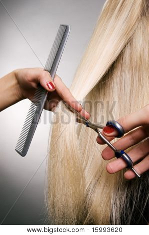 professional hairdresser in the work. studio shot over grey background
