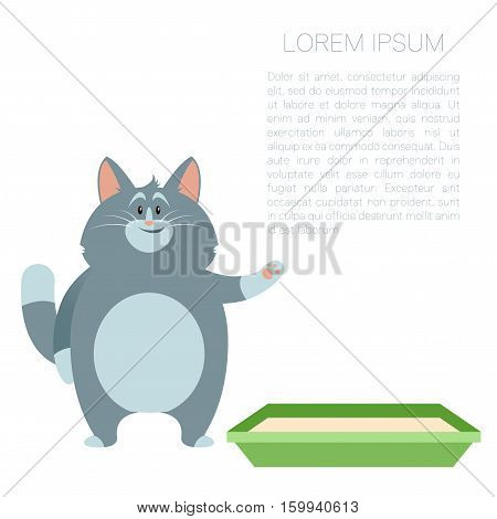 Vector image of thebanner with cat and its litter