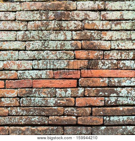 Brick wall texture or brick wall background. Closeup brick wall for design with copy space for text or image. Abstract brick wall detail.