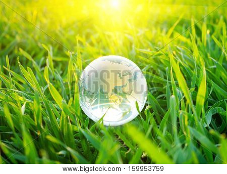 Earth globe in the grass