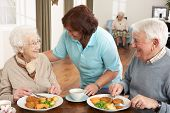 stock photo of meals wheels  - Senior Couple Being Served Meal By Carer - JPG