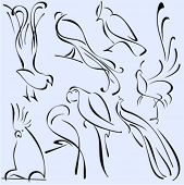 stock photo of peahen  - A set of 8 vector illustrations of birds in unique exquisite and ornamental style - JPG