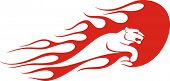 picture of panther  - Flaming panther vector illustration - JPG