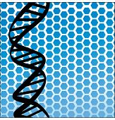 dna strand over honeycomb shape
